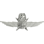 Air Force Master Cyberspace Operator Badge, Mirror Finish, Midsize