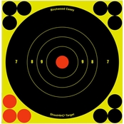 Birchwood Casey Shoot-N-C 6 In. Bull's-eye Target, 12 Pk.