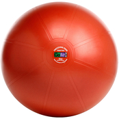 GoFit 55cm Professional Stability Ball