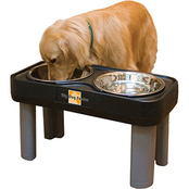 Our Pet's Healthy Pet Diner Elevated Feeder