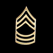 Army MSG Non-Subdued Pin-On Rank