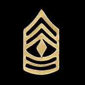 Army 1SG Non-Subdued Pin-On Rank