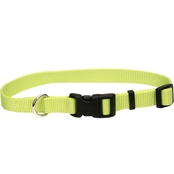 Coastal Pet Adjustable Nylon Dog Collar with Tuff Buckle