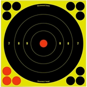 Birchwood Casey Shoot-N-C 8 In. Bull's-eye Target, 6 Pk.