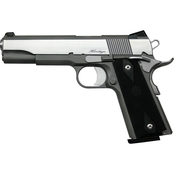 Dan Wesson RZ-45 Heritage 45 ACP 5 in. Barrel 8 Rds 2-Mags Pistol Stainless Steel