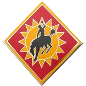 Army CSIB 115th Field Artillery Brigade