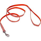 Coastal Pet Reflective Lead