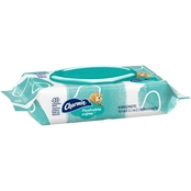 Charmin Freshmates Flushable Wet Wipes 40 pk.