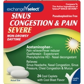 Exchange Select Sinus Congestion & Pain Relief Cool Blast 24 ct.