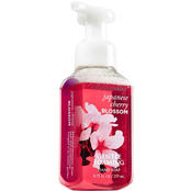 Bath & Body Works Japanese Cherry Blossom Gentle Foaming Hand Soap
