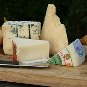The Gourmet Market Italian Cheese Sampler