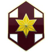 Army CSIB 804th Medical Brigade
