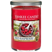 Yankee Candle Red Raspberry Large 2 Wick Tumbler Candle