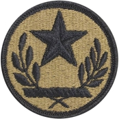 Army Unit Patch Texas State National Guard (OCP)