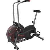 Schwinn Airdyne AD2 Upright Stationary Bike