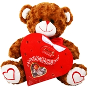 Alder Creek Valentine's Day Bear and Chocolate Heart