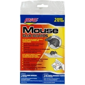 PIC Mouse Professional Glue Board 2 Pk.