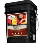 Wise Emergency Food Gluten Free Freeze Dried Fruit, 156 Servings