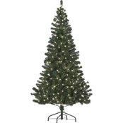Starlite 6 ft. Pre-Lit Canadian Fir with Clear Lights