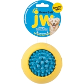 Petmate JW Grass Ball Dog Toy, Large