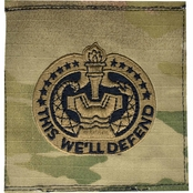 Army Drill Sergeant Badge Sew-On (OCP)