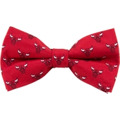 NBA Chicago Bulls Repeated Logo Bow Tie