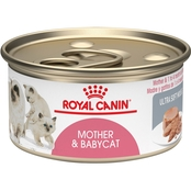Royal Canin Feline Health Nutrition Babycat Instinct Cat Food