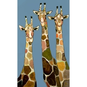 Greenbox Art 3 Giraffes, Eli Halpin, Canvas, 24 x 40 In.