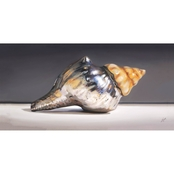 GreenBox Art Silver Shell, Nancy Egan, Canvas, 36 x 18