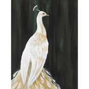 Greenbox Art White Peacock, Karin Grow, Canvas, 18 x 24 In.