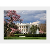 Capital Art White House South Lawn View on a Sunny Spring Day Matte
