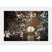 Capital Art Cherry Blossoms at Tidal Basin with Jefferson Memorial at Night Matte