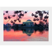 Capital Art Cherry Blossoms with Jefferson Monument at Sunset Matte