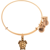 Alex and Ani Sea Turtle Charm Bangle  Project Common Bond