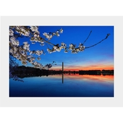 Capital Art Cherry Blossoms with the Washington Monument at Dawn Matte