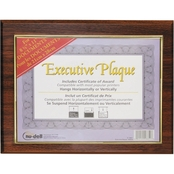 NuDell Executive Plaque, 13 x 10 1/2 In.