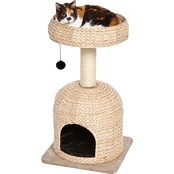 Feline Nuvo Scout by Midwest Homes For Pets