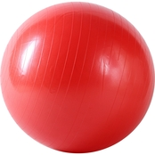 Sunny Health and Fitness Anti-Burst 55cm Gym Ball