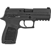 Sig Sauer P320 9mm 3.9 in. Barrel 15 Rnd 2 Mag NS Pistol Black