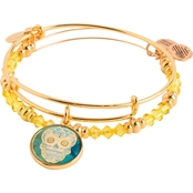 Alex and Ani Art Infusion Bangle Set Calavera