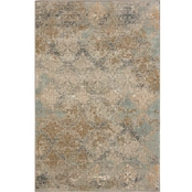 Karastan Moy Willow Grey Rug