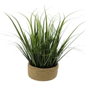 35 in. Green Grass-N-Rope Pot