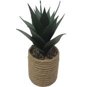 20 in. Agave-N-Rope Container