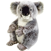 National Geographic Plush Koala
