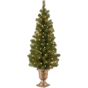 National Tree Company Montclair Spruce Entrance Tree with Clear Lights