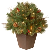 National Tree Company 24 in. Glistening Pine Porch Bush with Clear Lights