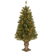National Tree Company 4 ft. Atlanta Spruce Entrance Tree with Clear Lights