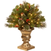 National Tree Company 24 in. Crestwood Spruce Porch Bush with Clear Lights