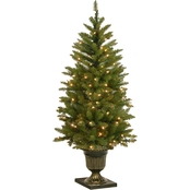 National Tree Company 4 ft. Dunhill Fir Entrance Tree with Clear Lights
