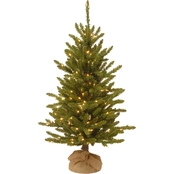 National Tree Company 4 ft. Kensington Burlap Tree with Clear Lights